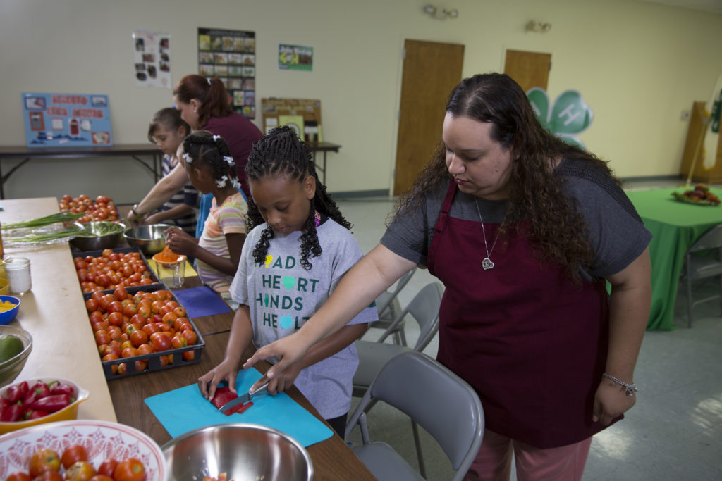 Students and Teachers working to learn to prepare fresh vegetables