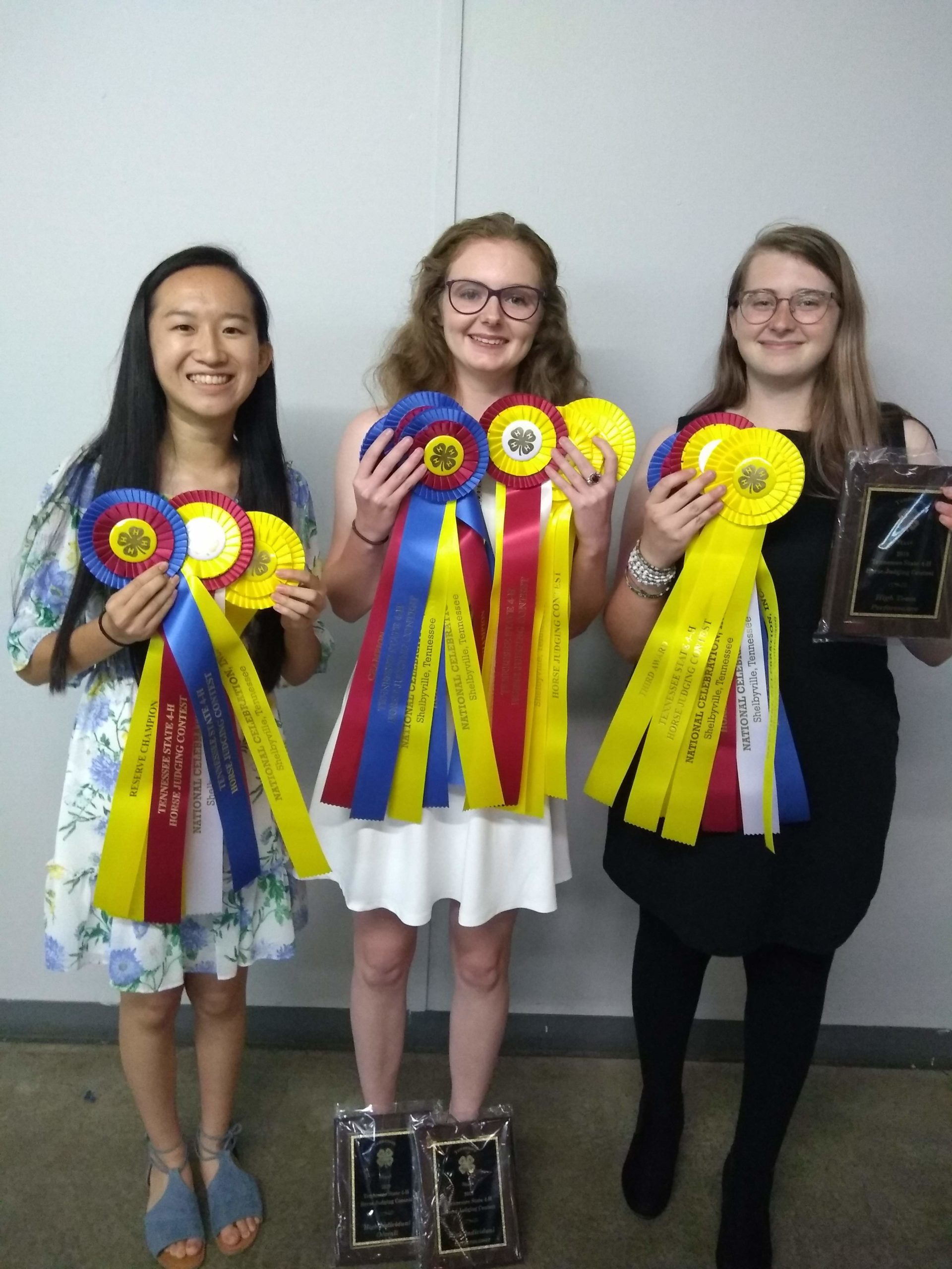 youth showing horse judging ribbons